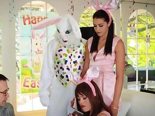 Teen broad in the beam flimsy boobs Penman Fuck Bunny